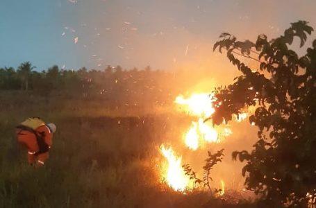 Defesa Civil e Corpo de Bombeiros   controlam incêndio na Via Cascalheira